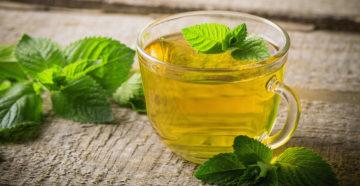 Чай из мелиссы польза и вред для женщин