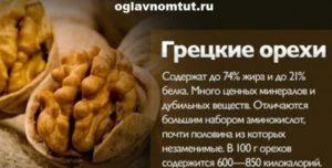 Орех грецкий польза и вред для организма человека
