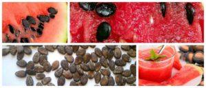 Семечки арбуза вред и польза и вред