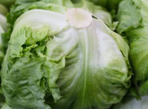 Салат айсберг польза и вред для здоровья