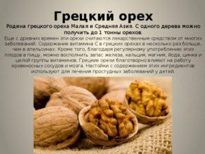 Грецкий орех польза и вред для организма для женщин