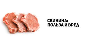 Свинина для мужчин польза и вред