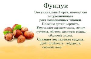 Орехи фундук польза и вред для здоровья