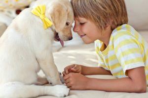 Собака и ребенок в доме вред или польза