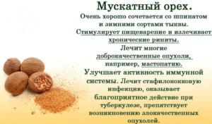 Мускатный орех польза и вред для здоровья
