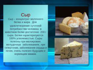 Твердый сыр вред и польза и вред